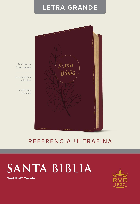 Santa Biblia RVR60, Edición de referencia ultrafina, letra grande (Letra Roja, SentiPiel, Ciruela)