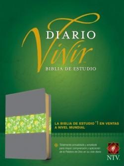 Biblia de estudio del diario vivir NTV (Letra Roja, SentiPiel, Gris/Verde)